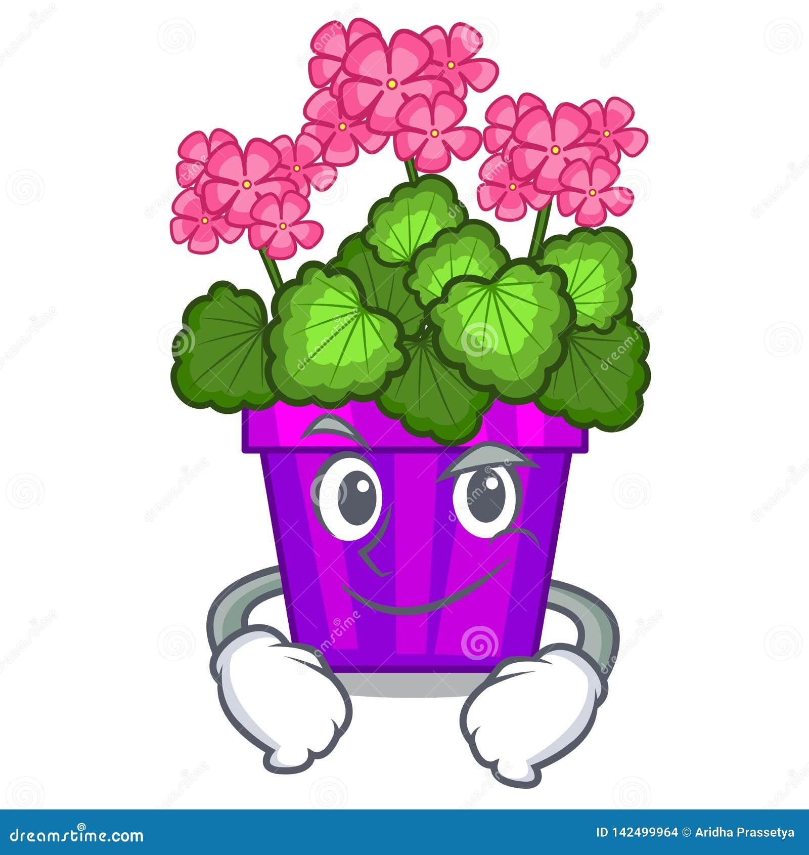 Les fleurs souriantes d un air affecté de géranium collent la tige de caractère