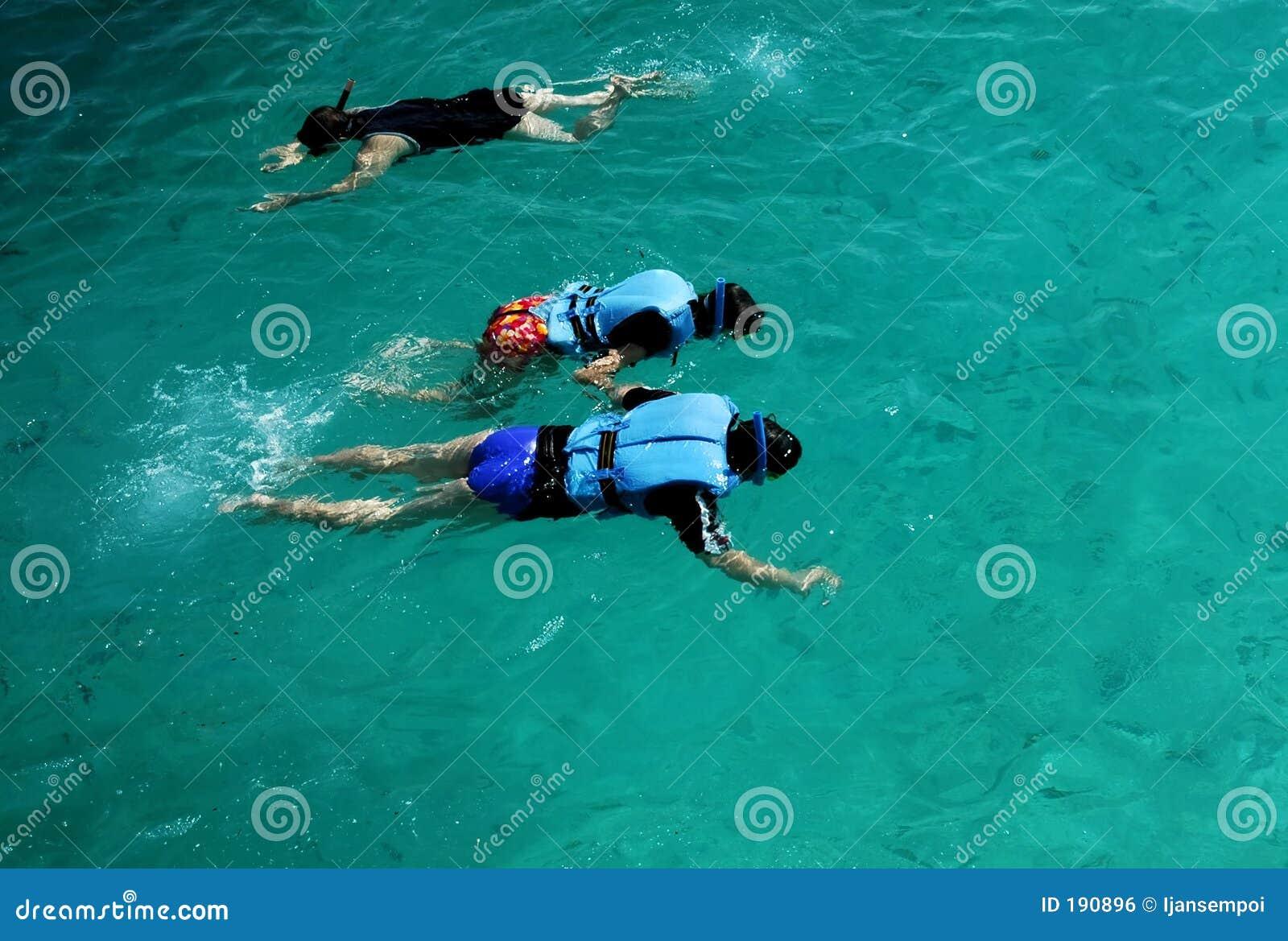 Les gens naviguant au schnorchel