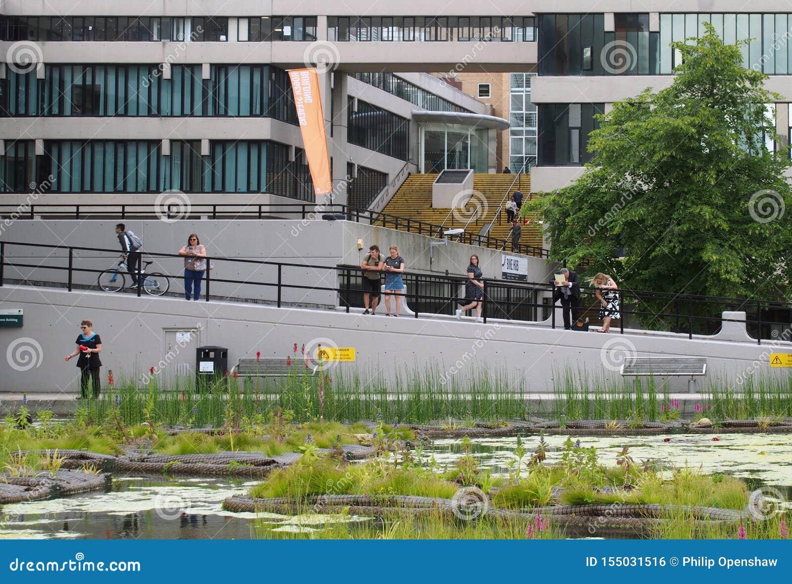 Les gens se sont tenus autour de l étang observant une femme alimenter les canards près le du bâtiment de Roger Stevens à l unive