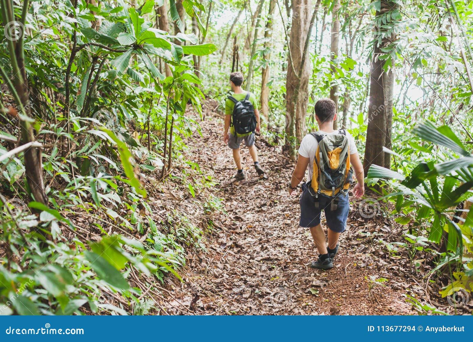 Les gens trimardant avec des sacs à dos, trekking de jungle, groupe de randonneurs de touristes