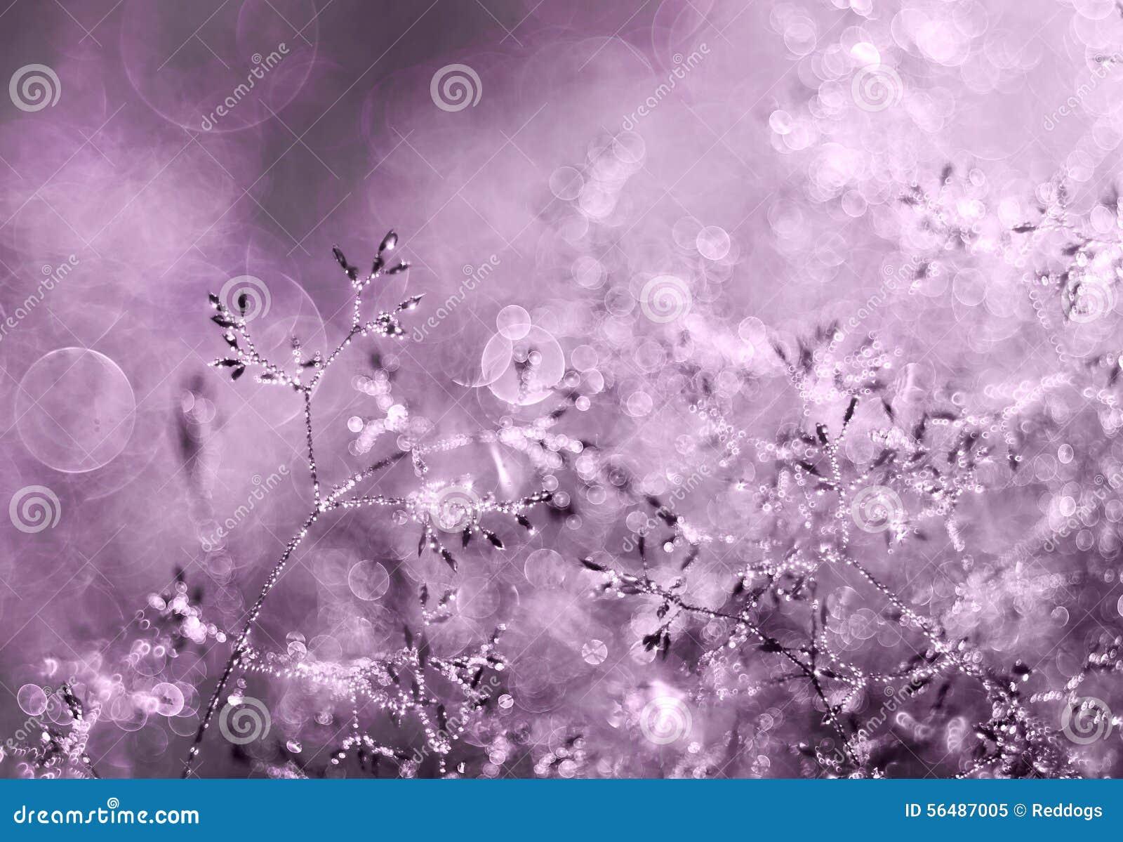 Les gouttelettes proches de rosée engazonnent l eau haute parfaite de matin de lame