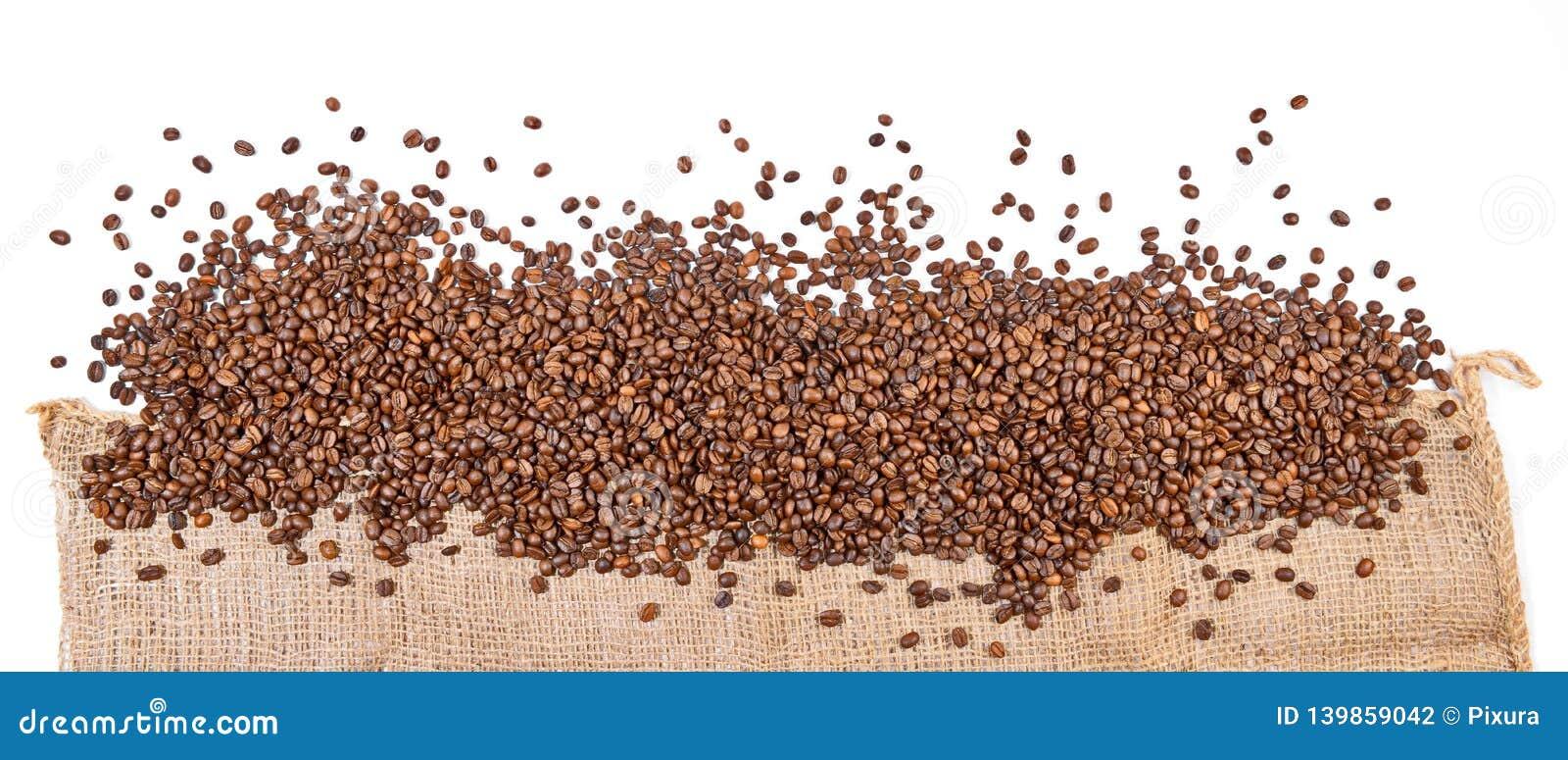 Les grains de café mettent en sac - le panorama