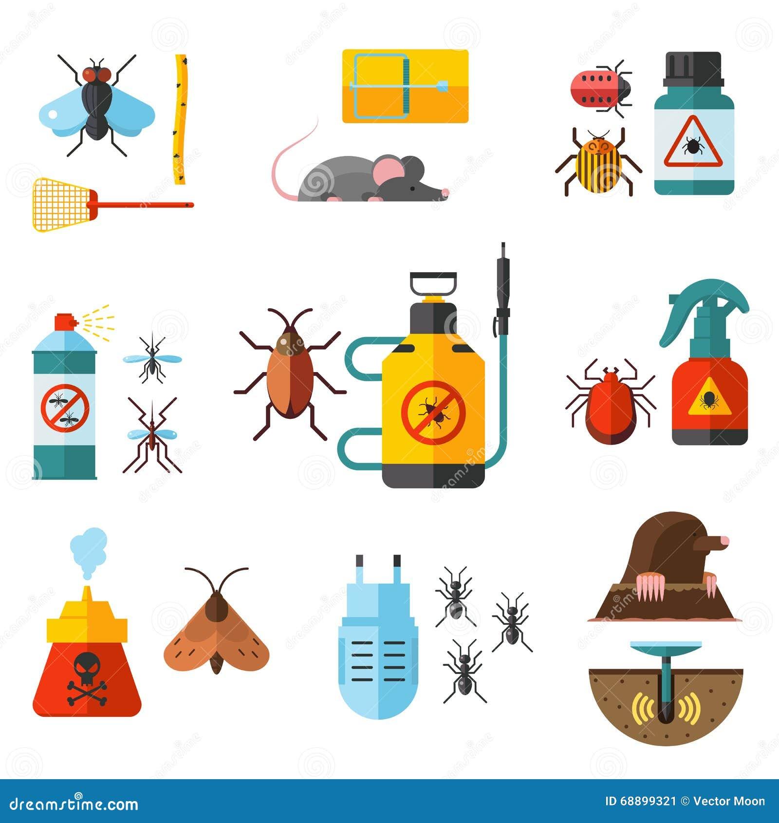 Lutter contre les souris dans la maison description entreprise de dratisation tournai conseils - Solution radicale contre les souris ...