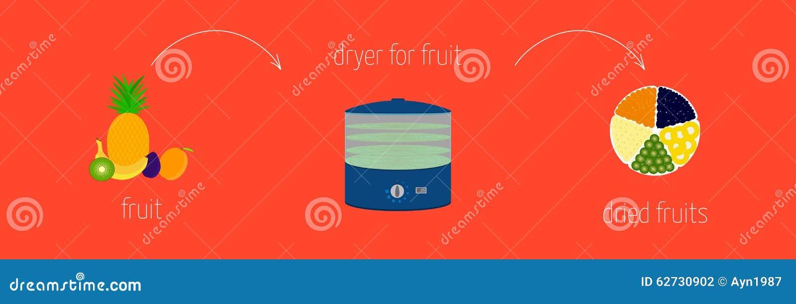 Les instructions simples de recette sur la façon dont faire ont séché utilisant un dessiccateur pour des fruits et légumes