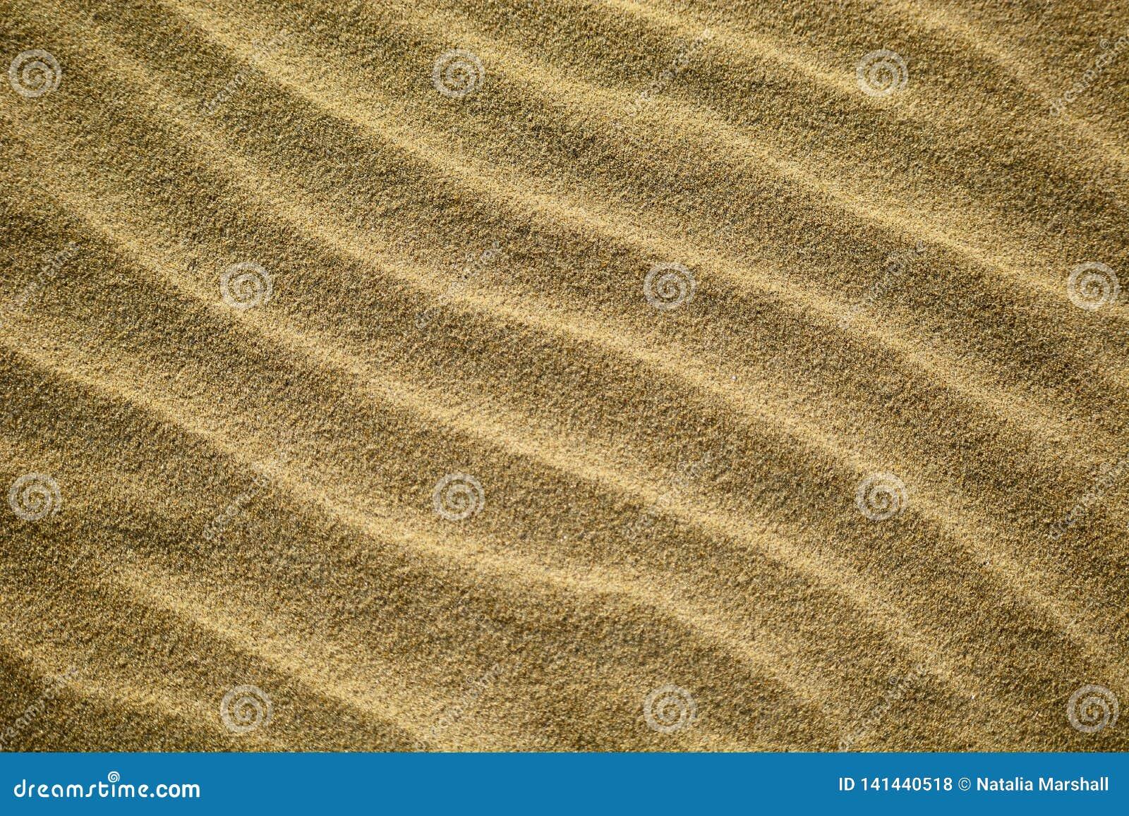 Les modèles abstraits ont fait par des vagues sur le sable d or des plages du Nouvelle-Zélande ; début de la matinée - belle lumi