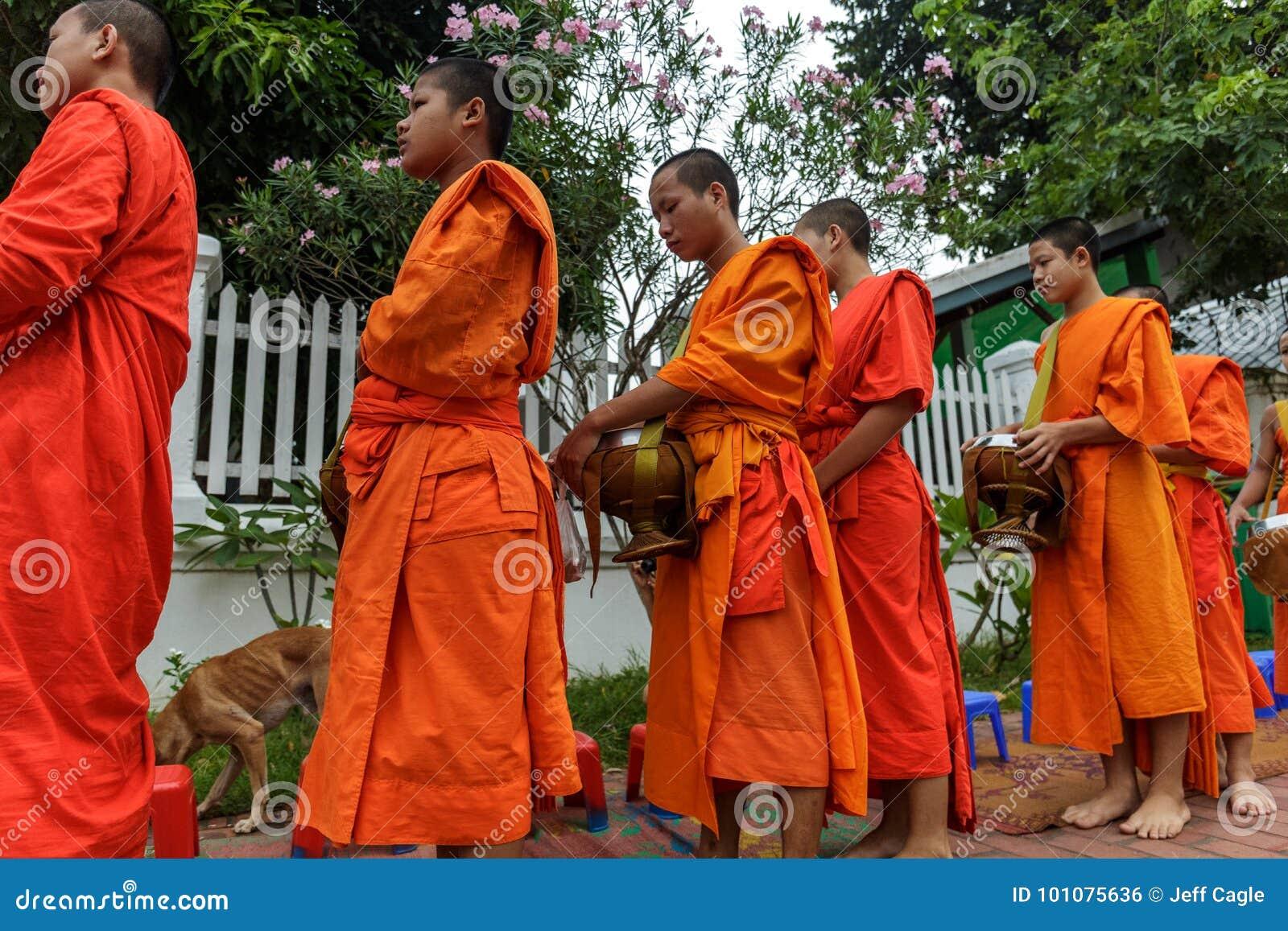 Les moines bouddhistes rassemblent l aumône dans Luang Prabang, Laos