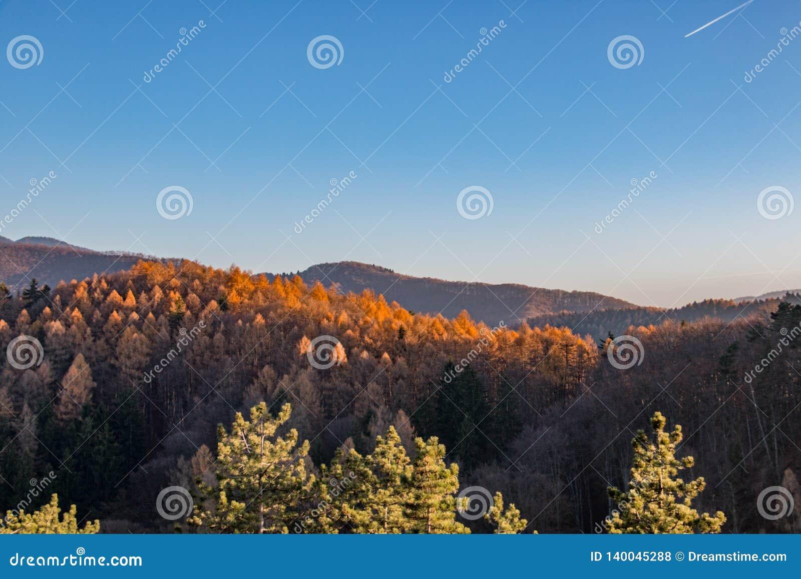 Les montagnes d été aménagent en parc en Transylvanie, Roumanie