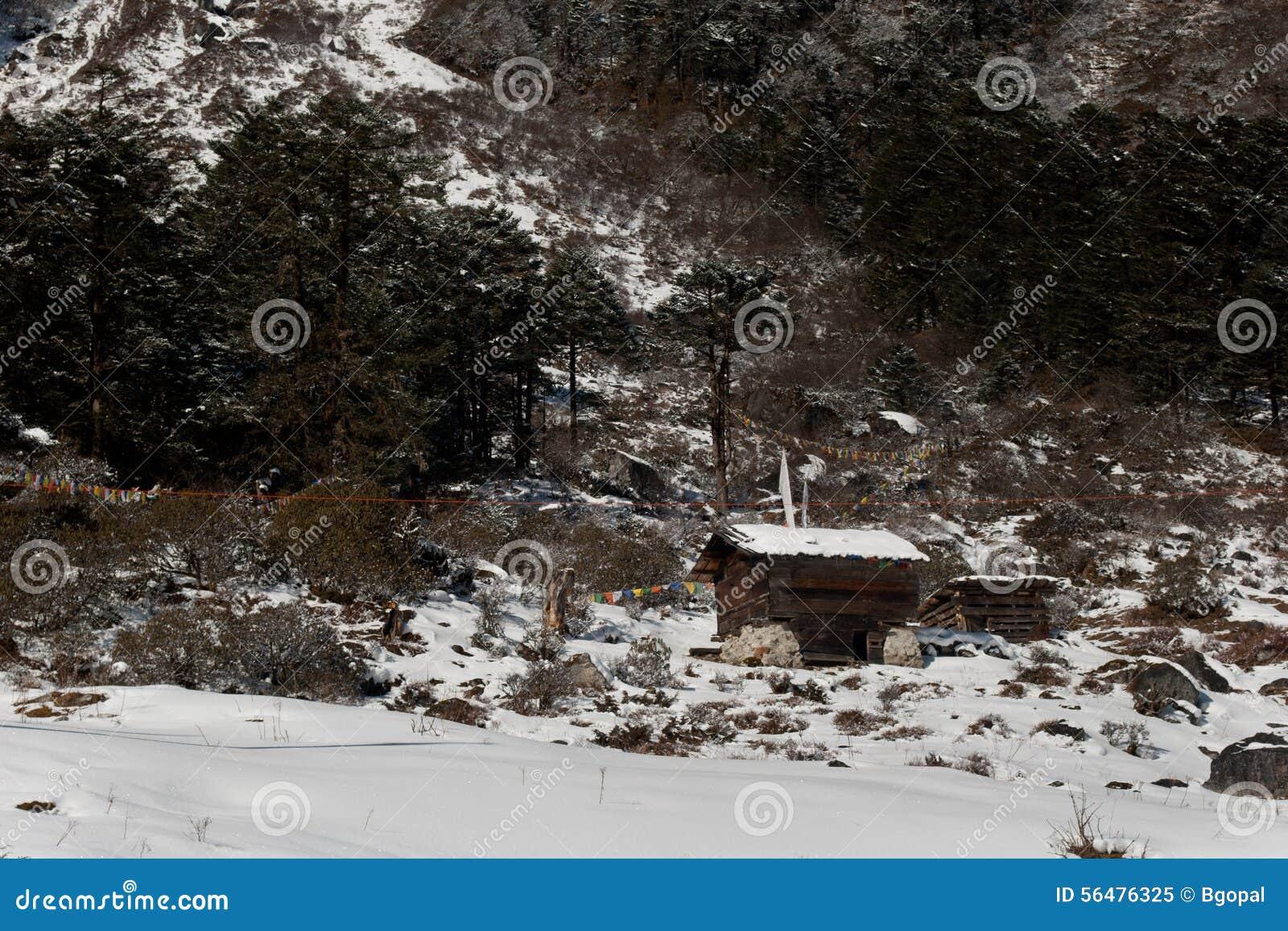 Les neige caped la vallée de Yumthang