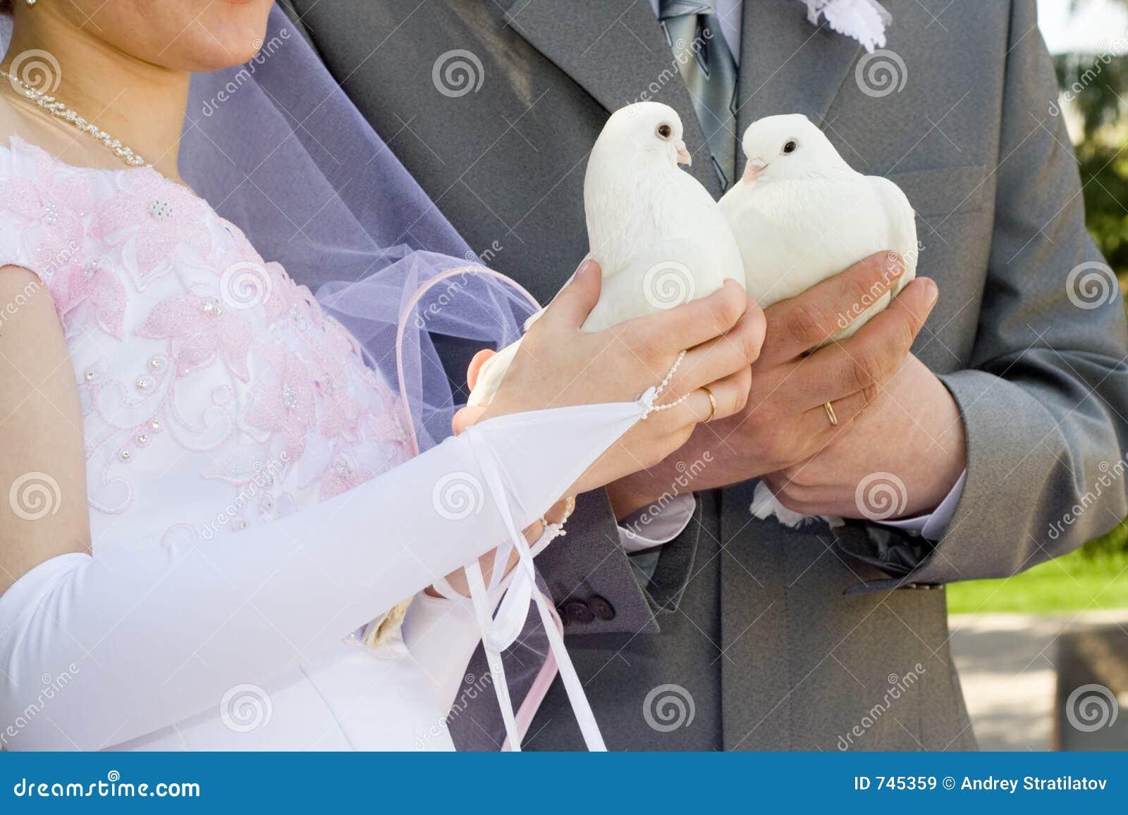 Les nouveaux mariés et la colombe.
