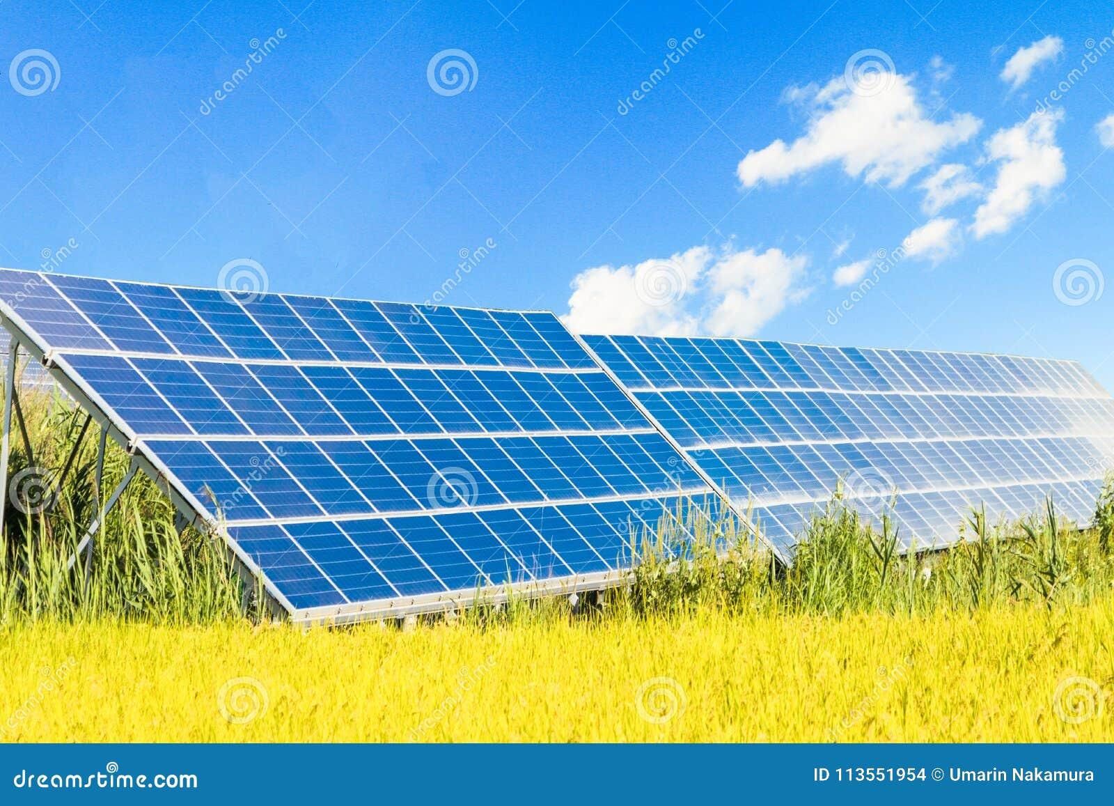Les panneaux d énergie solaire, les modules photovoltaïques pour l innovation verdissent l énergie pendant la vie
