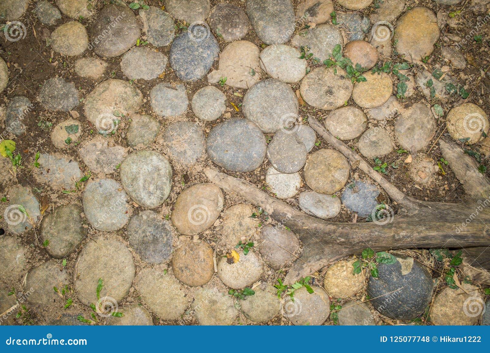 Les pierres, l herbe et l usine s enracinent sur la terre, utilisée comme fond et texture