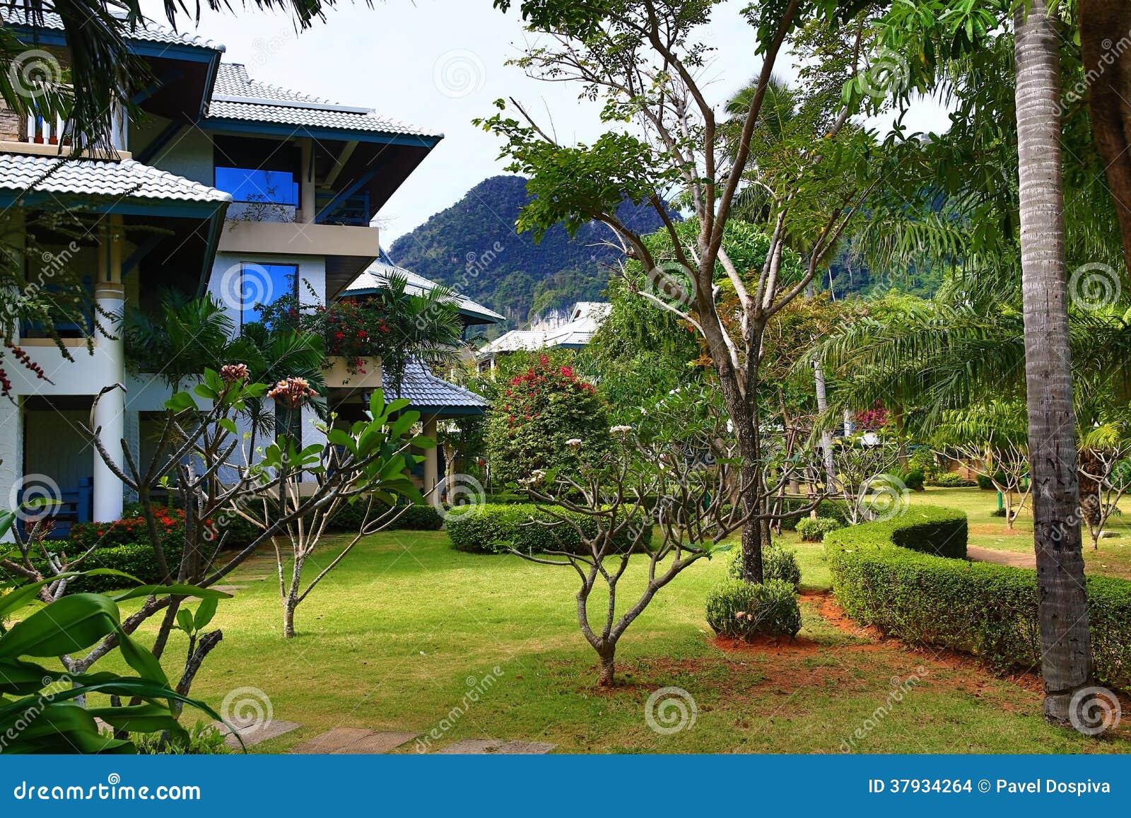 plantes tropicales thailande