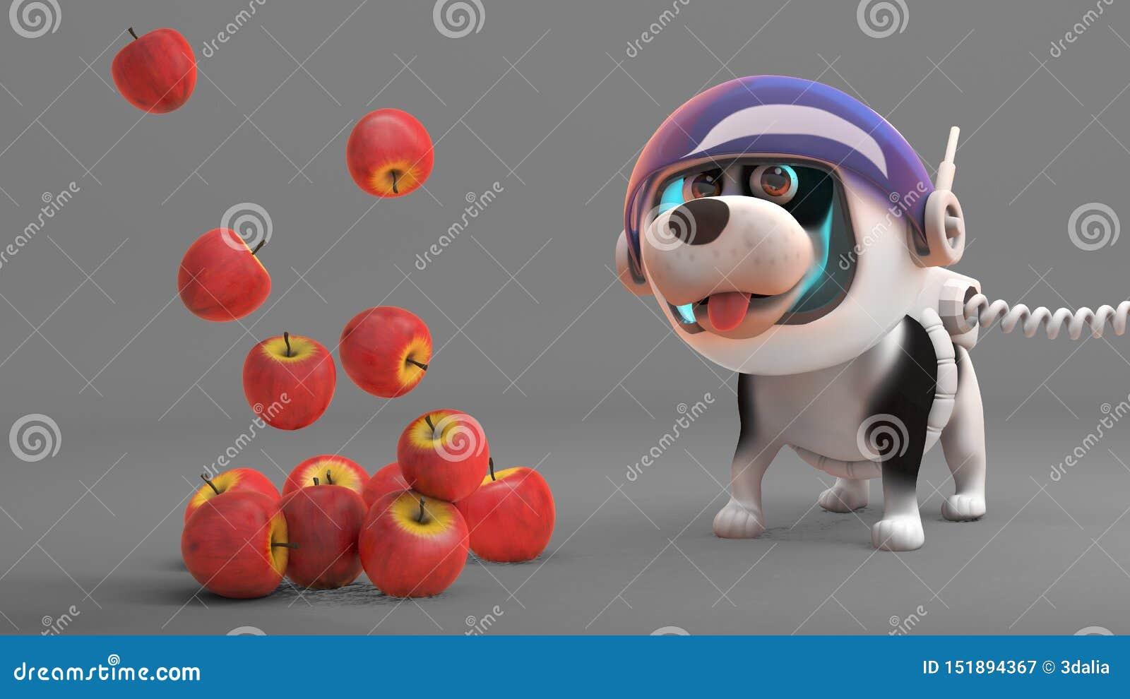 Les pommes flottent vers le bas de l espace à la stupéfaction du chien de l espace, l illustration 3d
