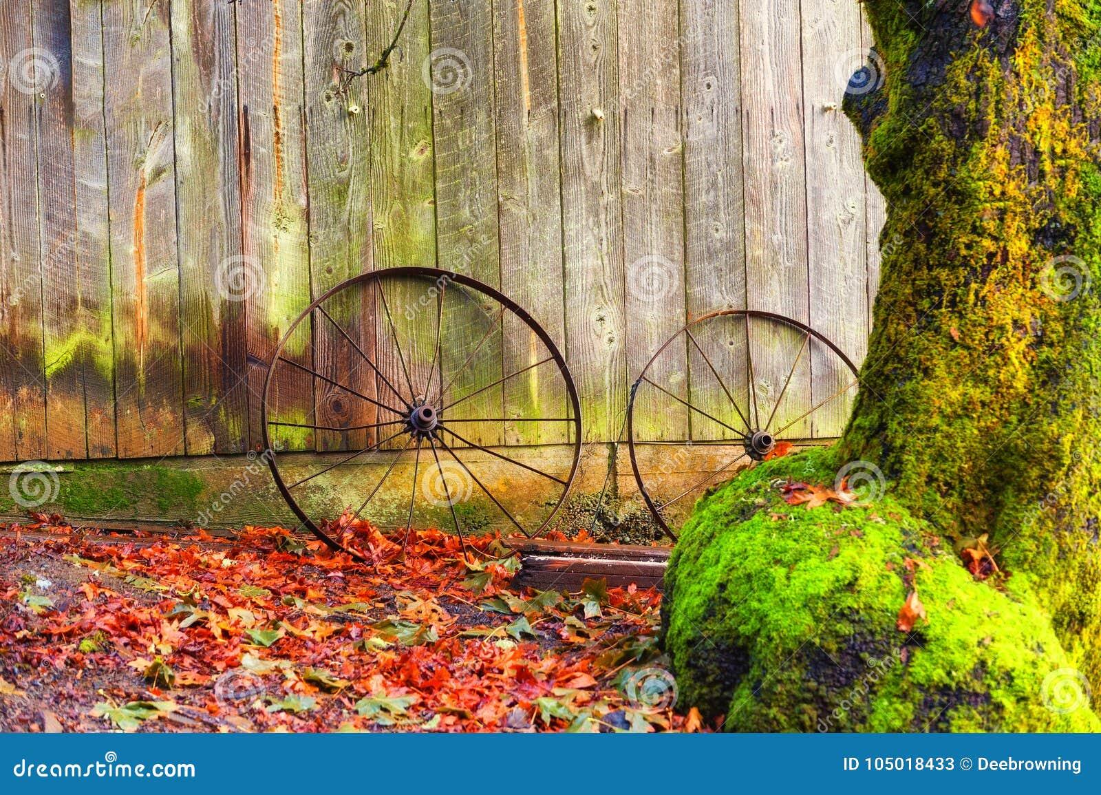 Les roues rouillées se penchent contre une grange parmi des feuilles d automne