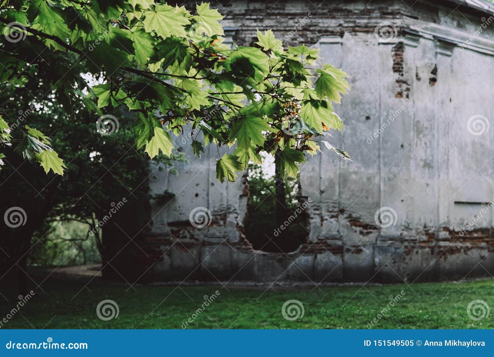 Les ruines de la chapelle du siècle XXII