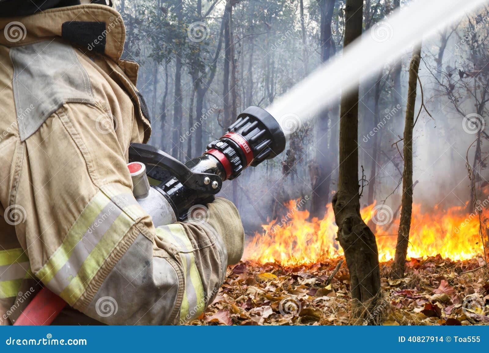 Les sapeurs-pompiers aidés luttent un feu de forêt
