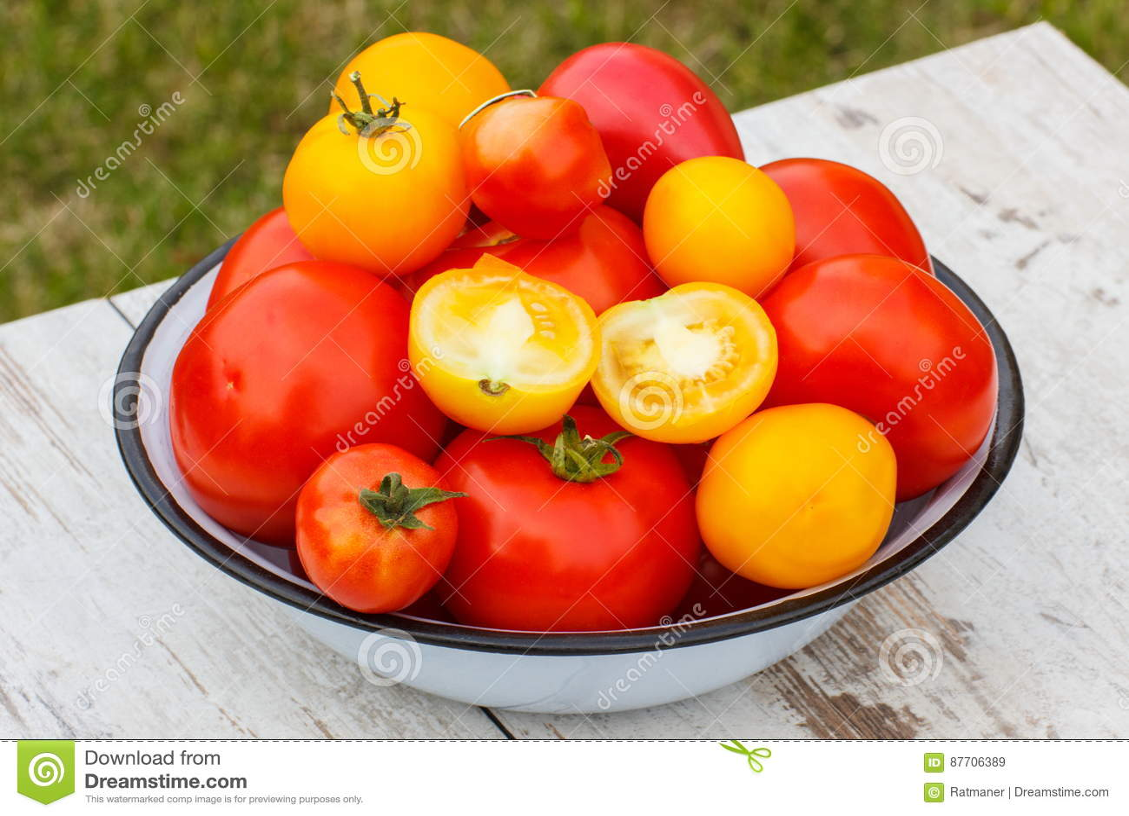Les tomates en métal roulent dans le jardin le jour ensoleillé