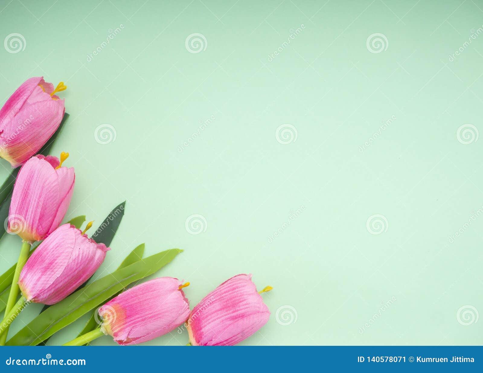 Les tulipes roses le fond de Livre vert