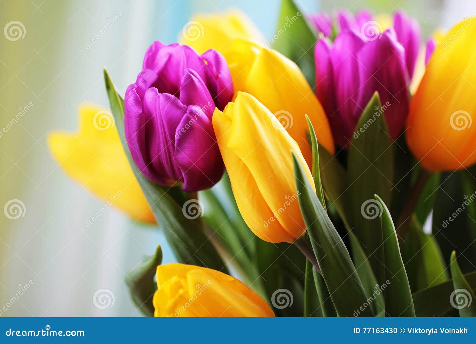 Les tulipes se ferment vers le haut