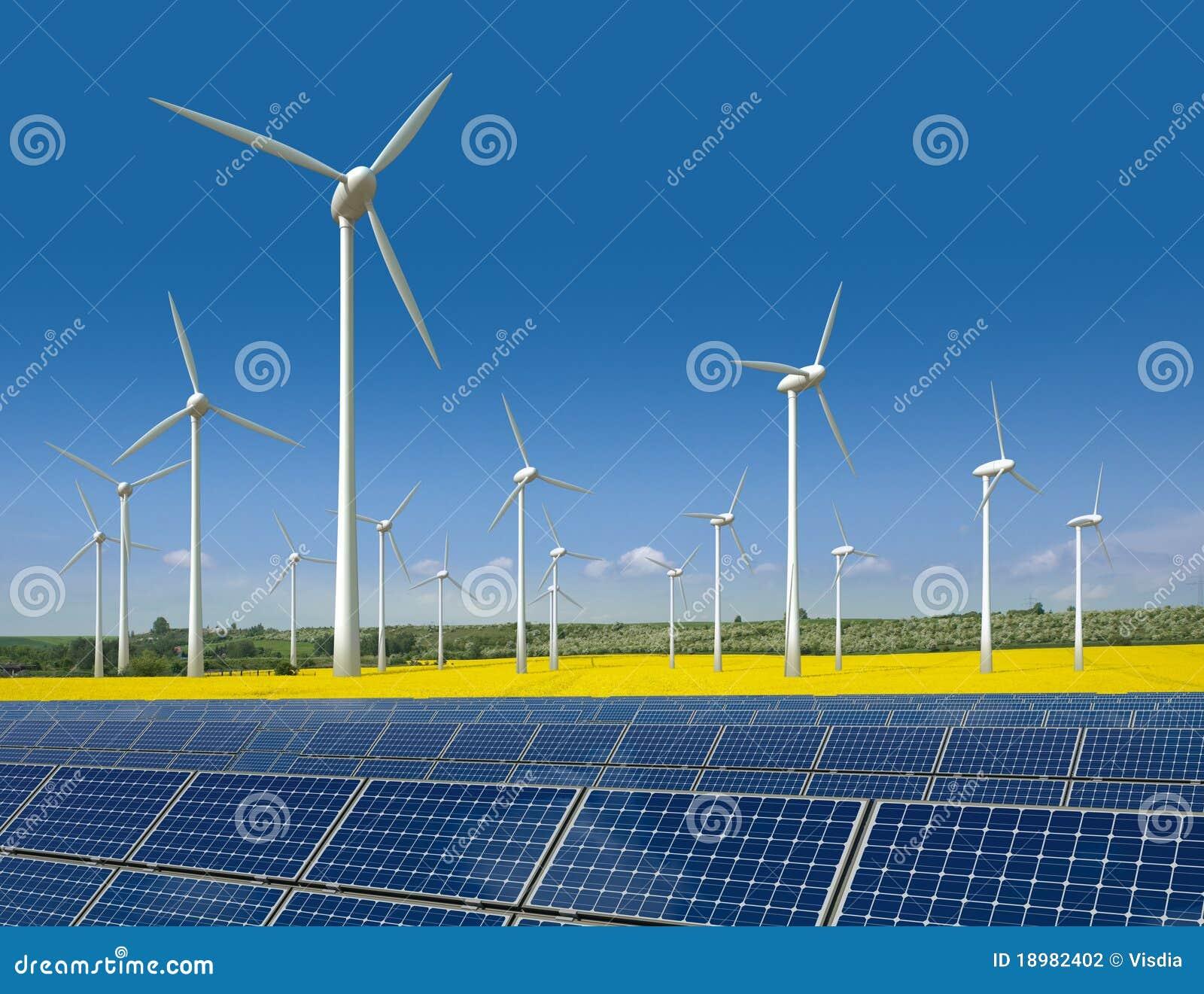Les turbines de vent et les panneaux solaires dans une graine de colza mettent en place