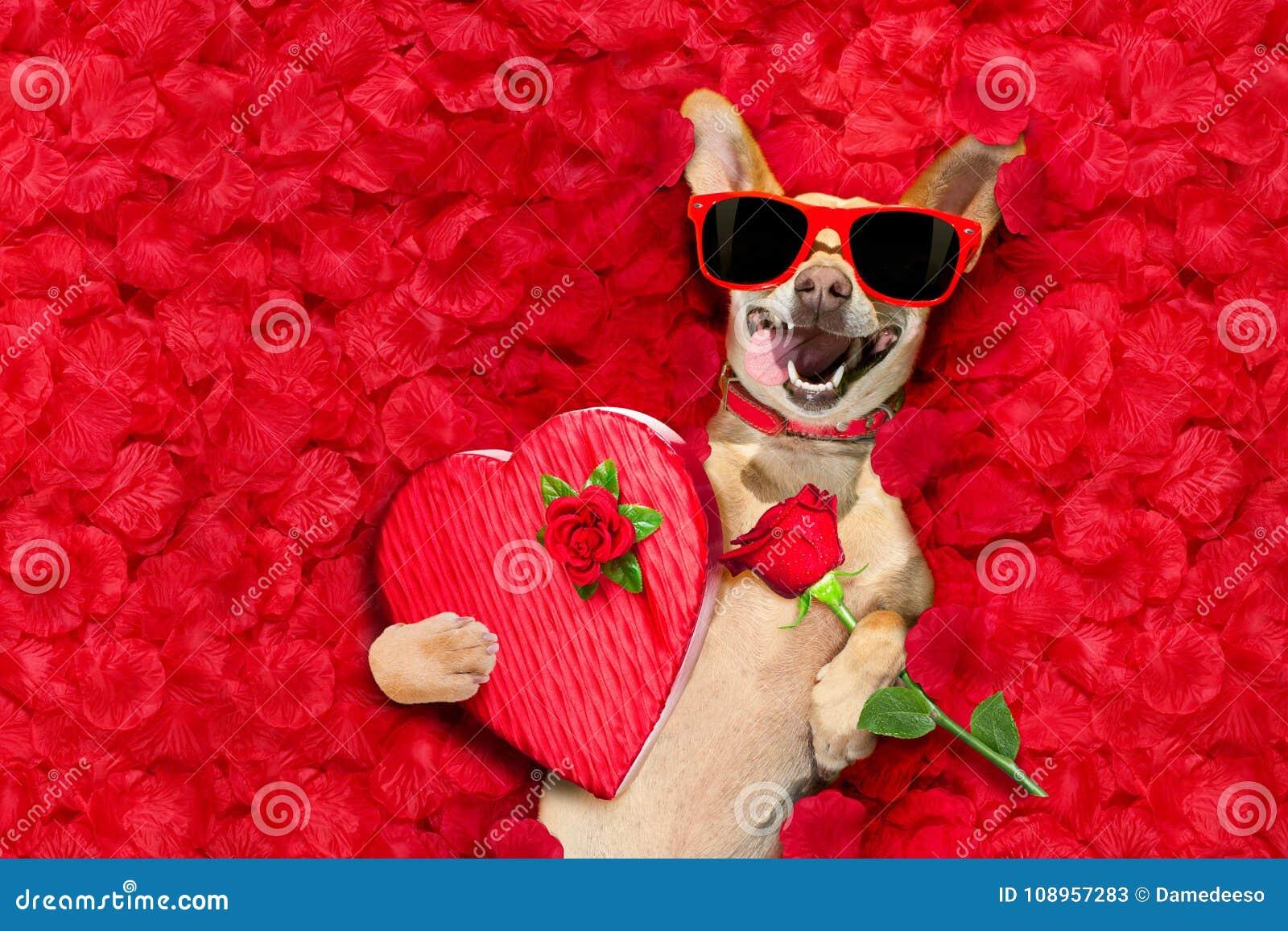 Les valentines poursuivent avec des pétales de rose