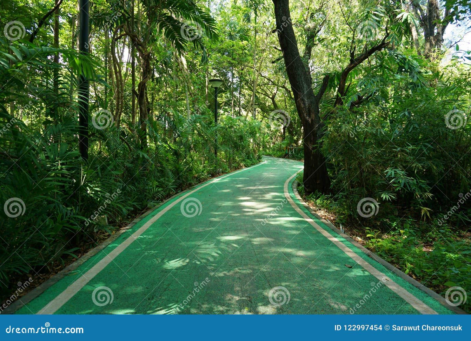 Les voies pour bicyclettes dans la putréfaction Fai de parc de Vachirabenjatas se garent