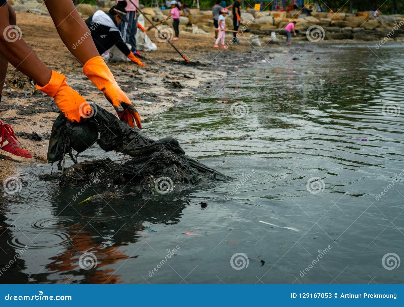 Les volontaires portent les gants en caoutchouc oranges pour rassembler des déchets sur la plage Pollution d environnement de pla