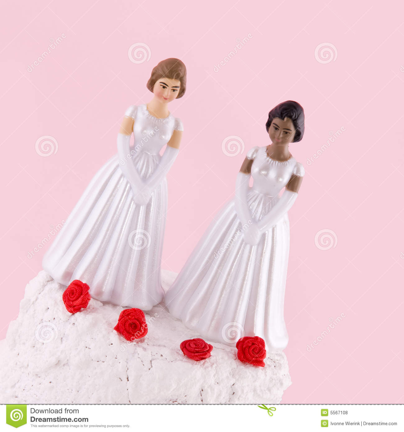 Lesbian Wedding Day Royalty Free Stock Photos