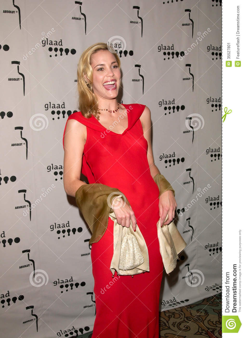 Actress LESLIE BIBB at the Gay & Lesbian Alliance Against Defamation ...: dreamstime.com/stock-image-leslie-bibb-apr-actress-gay-lesbian...