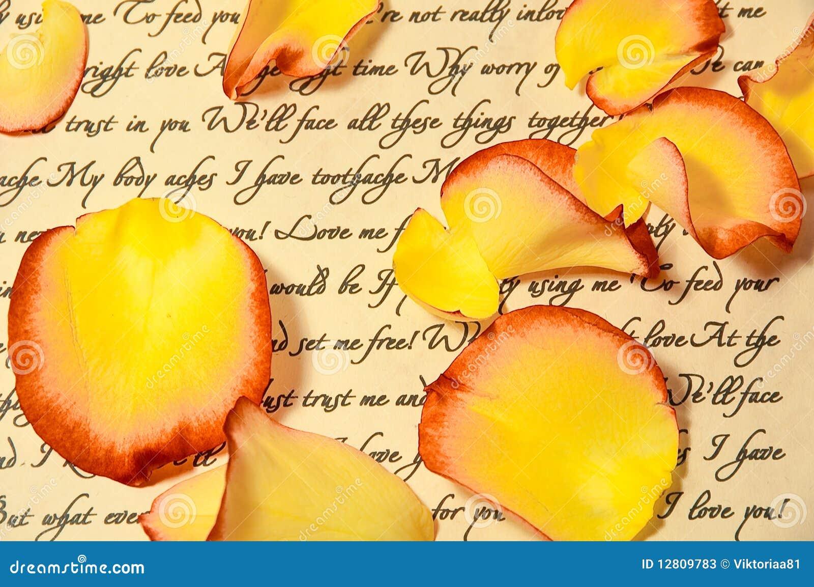 Letra de amor com pétalas de Rosa