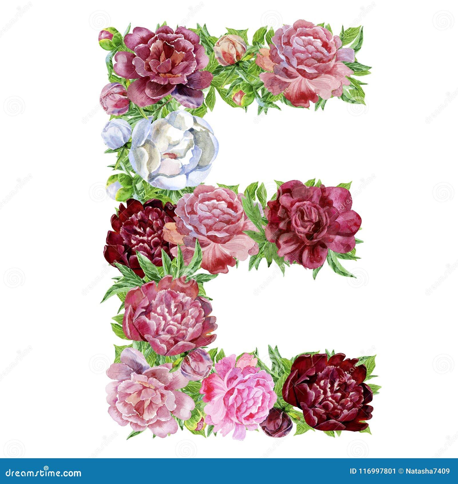 Letra E de las flores de la acuarela