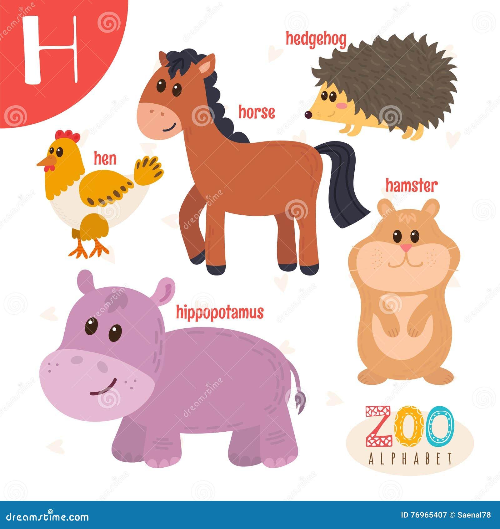 letra h animais bonitos animais engra ados dos desenhos