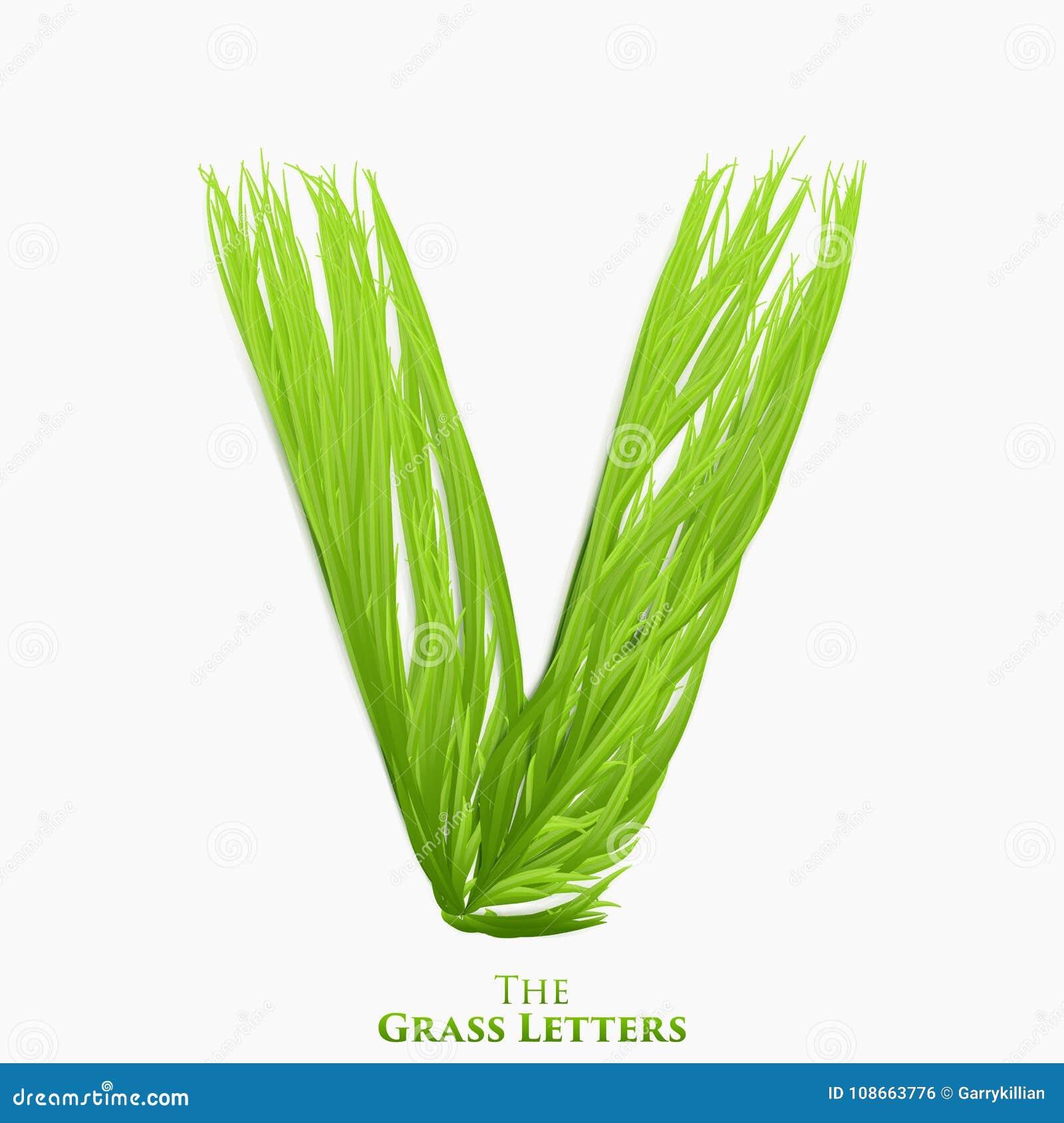 Letra V do vetor do alfabeto suculento da grama Símbolo verde de V que consiste crescendo a grama Alfabeto realístico de orgânico