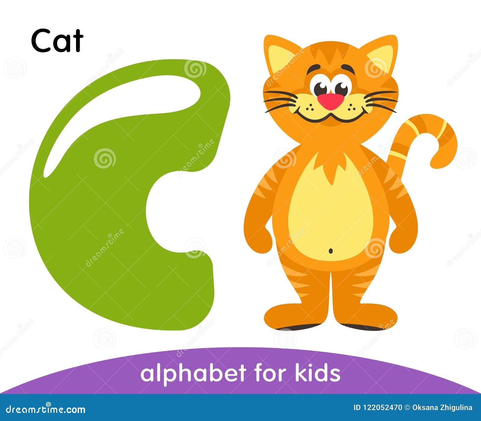 Letra verde C e gato amarelo