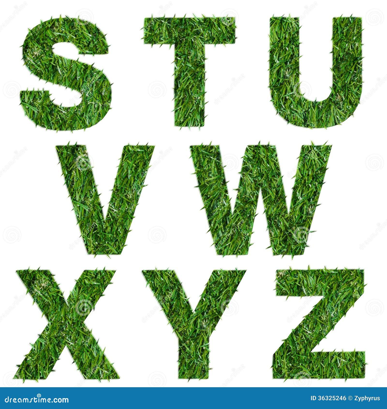 Letras s, t, u, v, w, x, y, z hecho de hierba verde