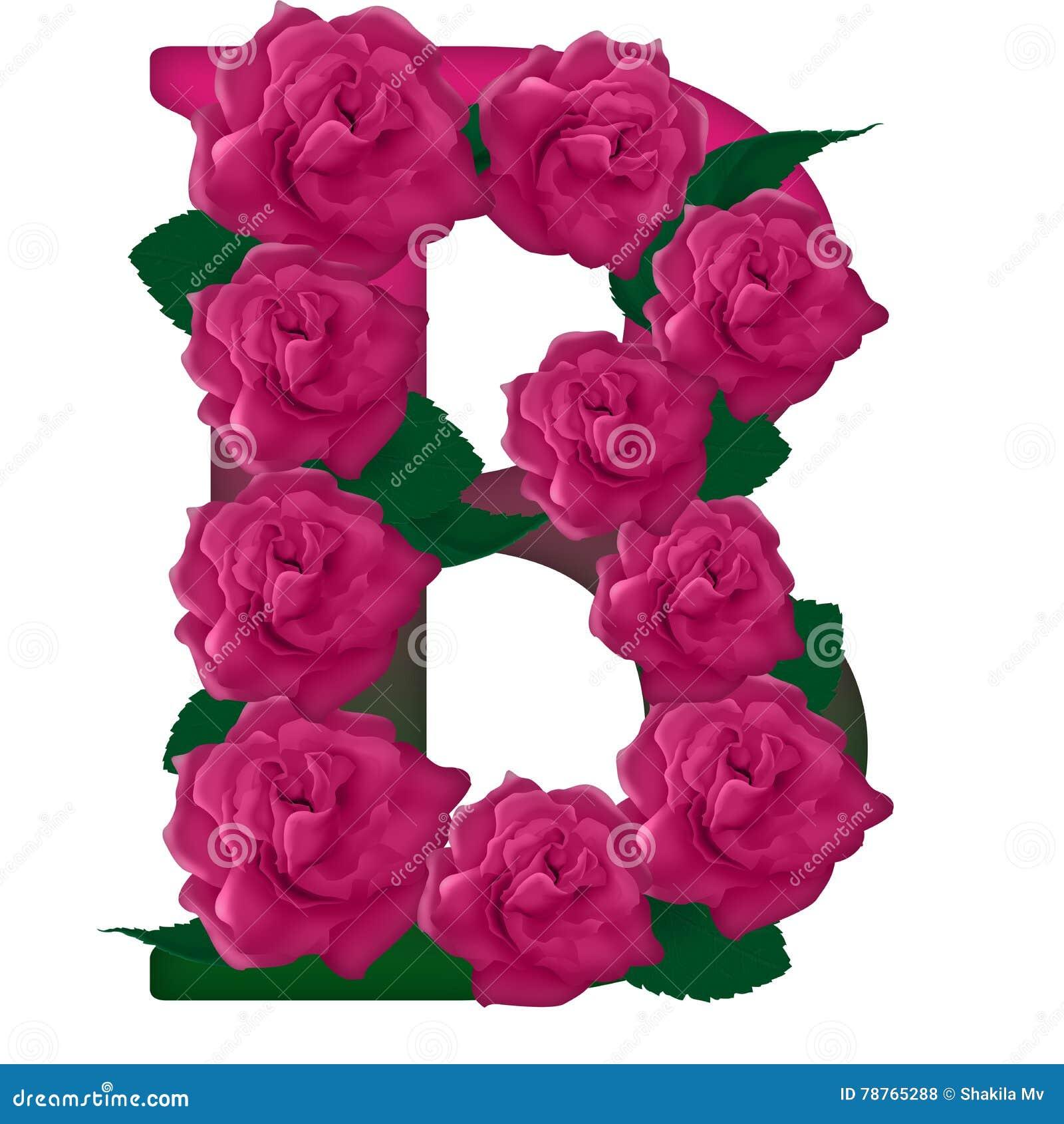 Letter B Flower Illustration Stock Photo - Illustration of colored ...