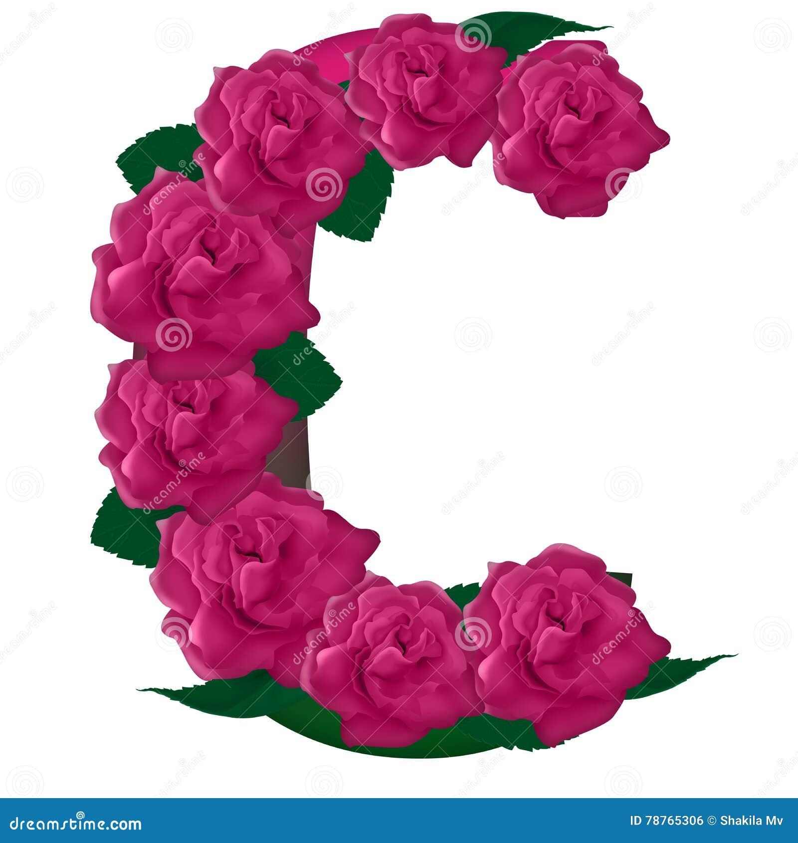Letter C Cute Flower Illustration Stock Photo - Illustration of ...
