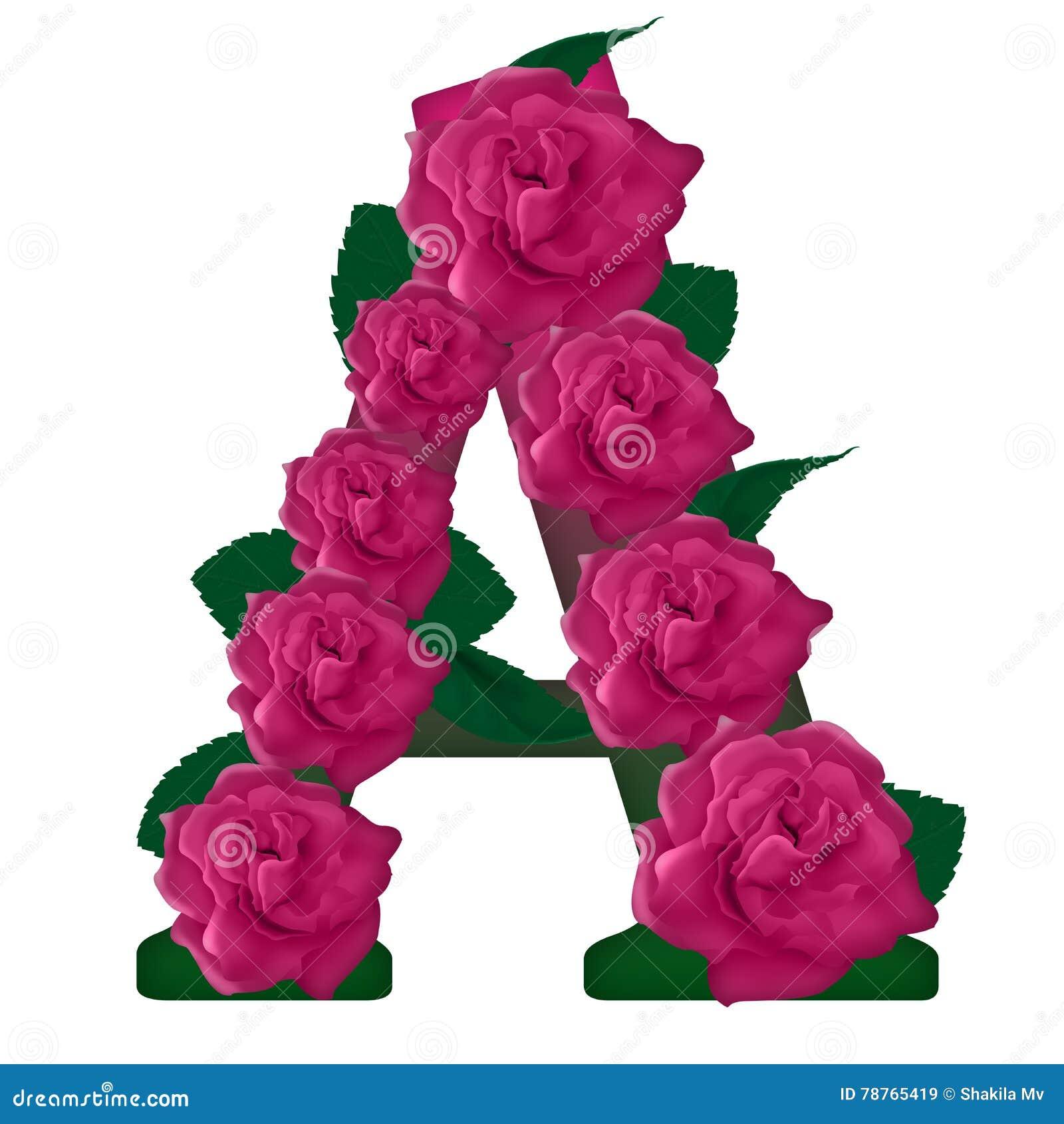 Letter A Cute Flower Illustration Stock Image   Illustration of
