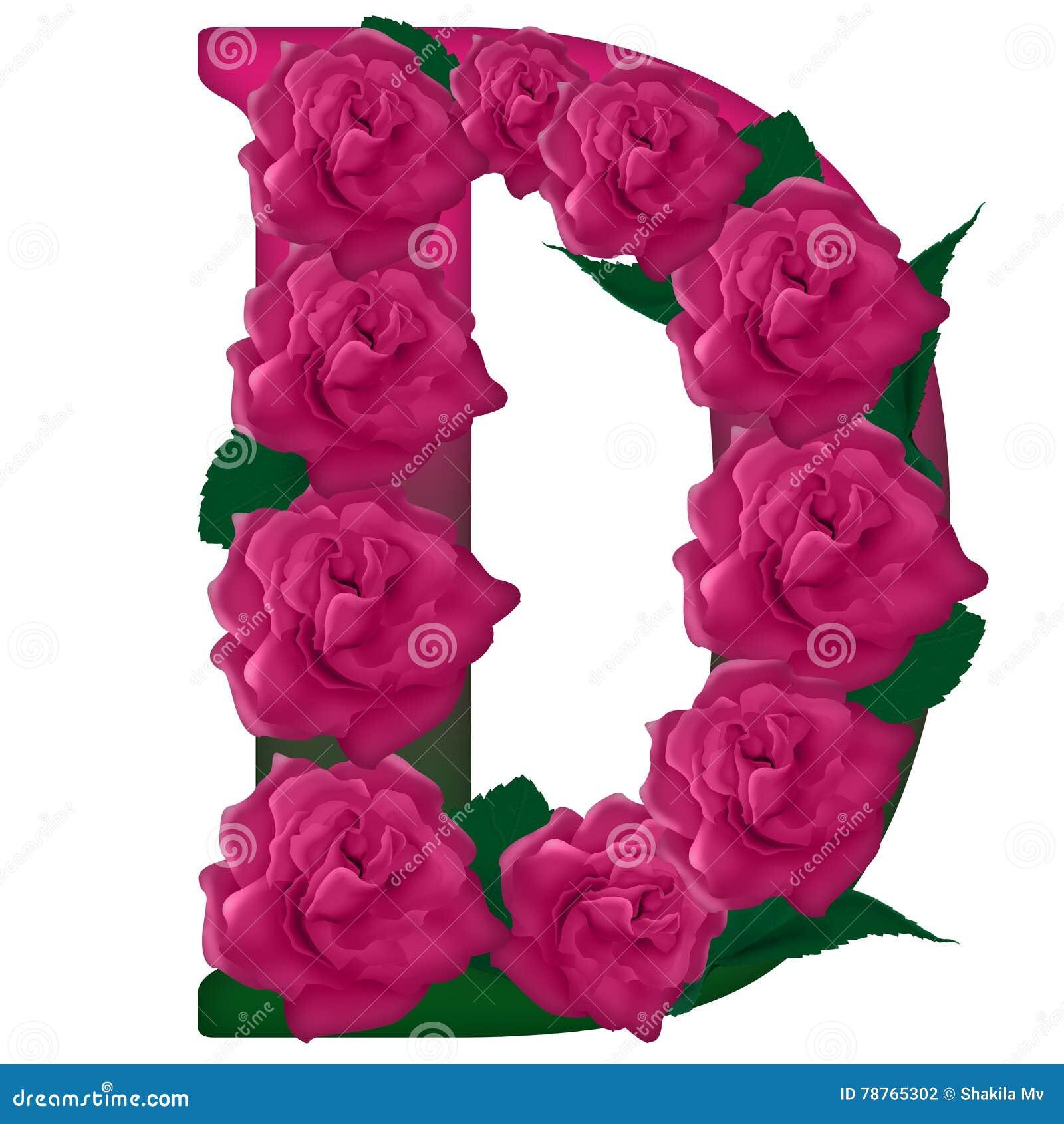 Letter D Flower Illustration Stock Photo - Illustration of classical ...