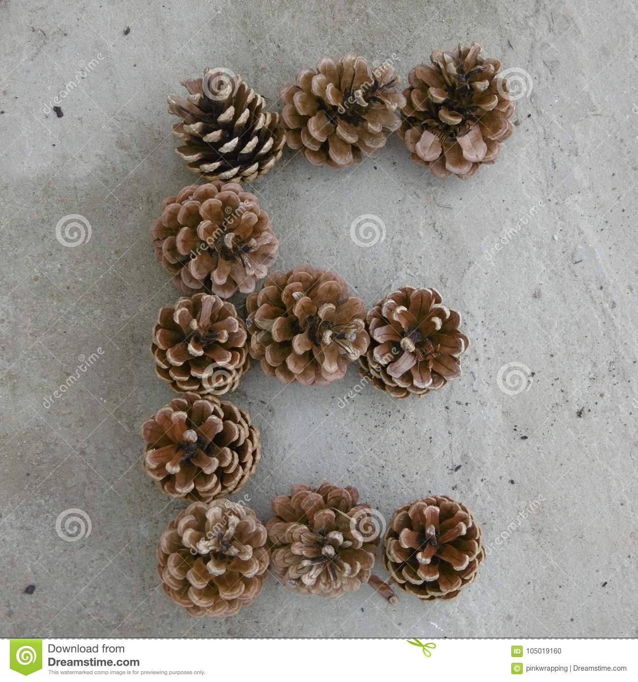 Letter E Made Out Of Pine Cones Stock Photo - Image of concretepaving,  grey: 105019160