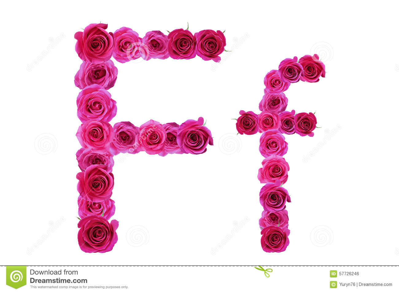 Letter F Of Roses Stock Photo - Image: 57726246