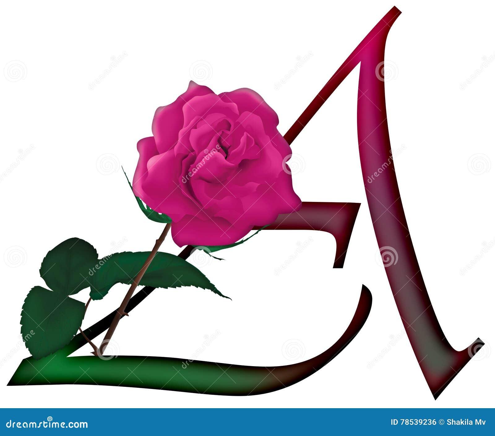 Letter A Floral FONT stock photo. Illustration of color - 78539236