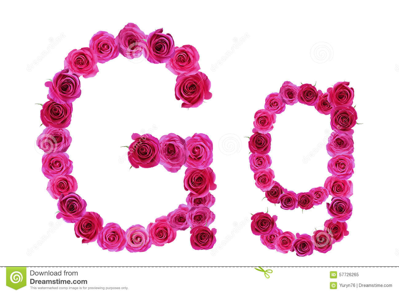 Letter R Roses Stock Images 4826 Photos