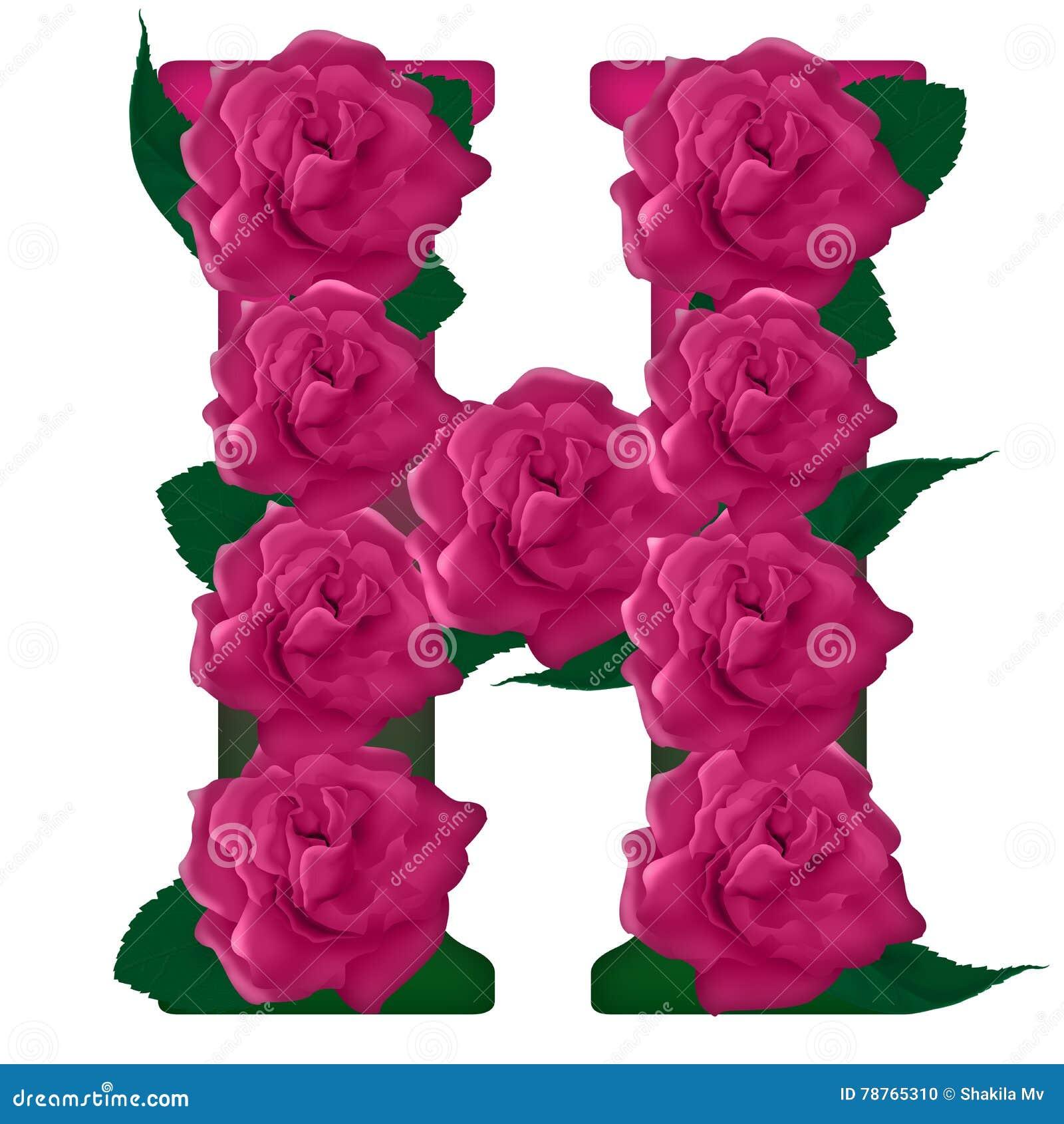 Letter H Cute Flower Illustration Illustration 78765310 - Megapixl