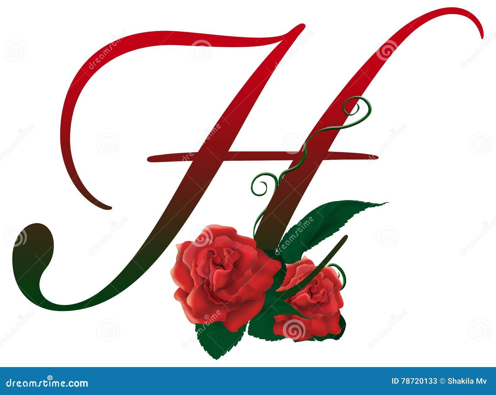 H Letter Images.Letter H Red Floral Illustration Stock Image Illustration Of