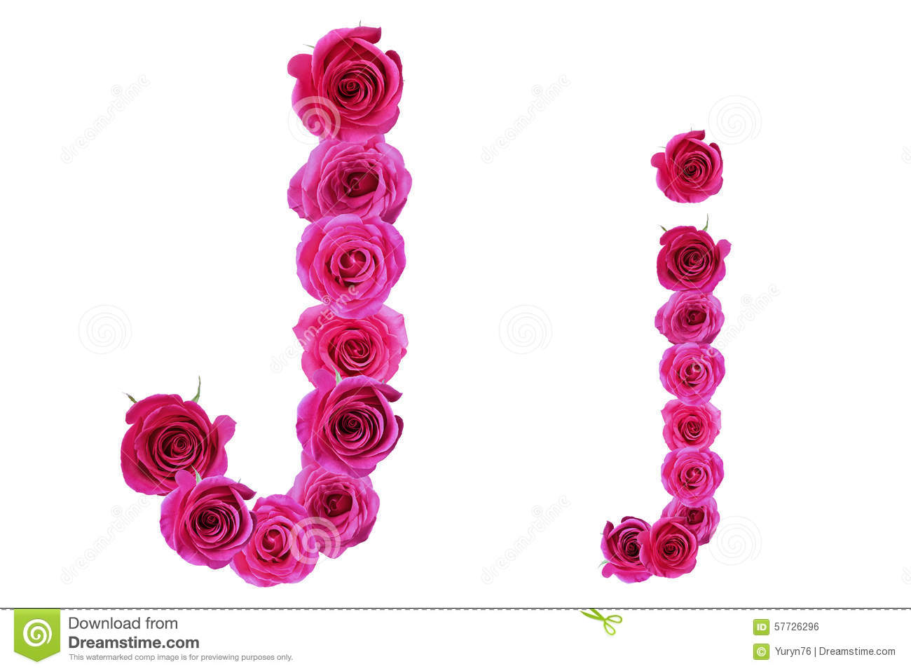 Letter J Of Roses Stock Photo Image Of Flora Text Rose 57726296