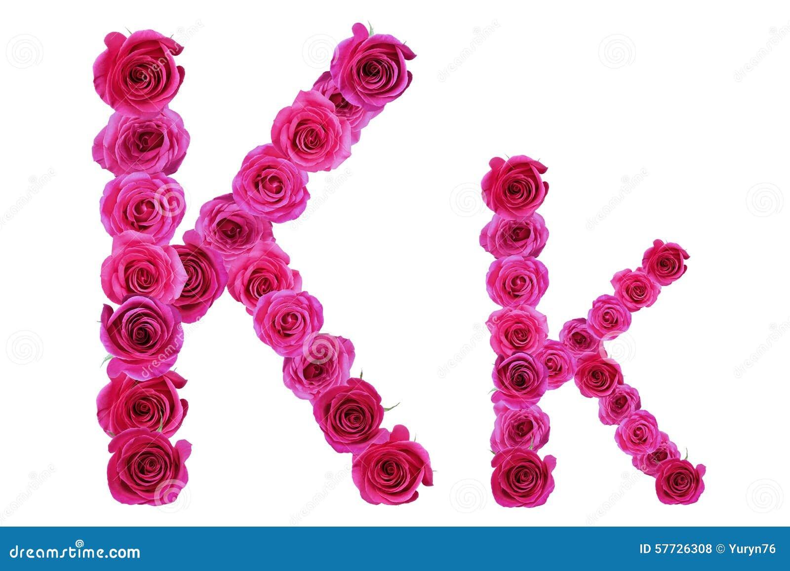 letter k roses stock photo image of nature roses season 57726308