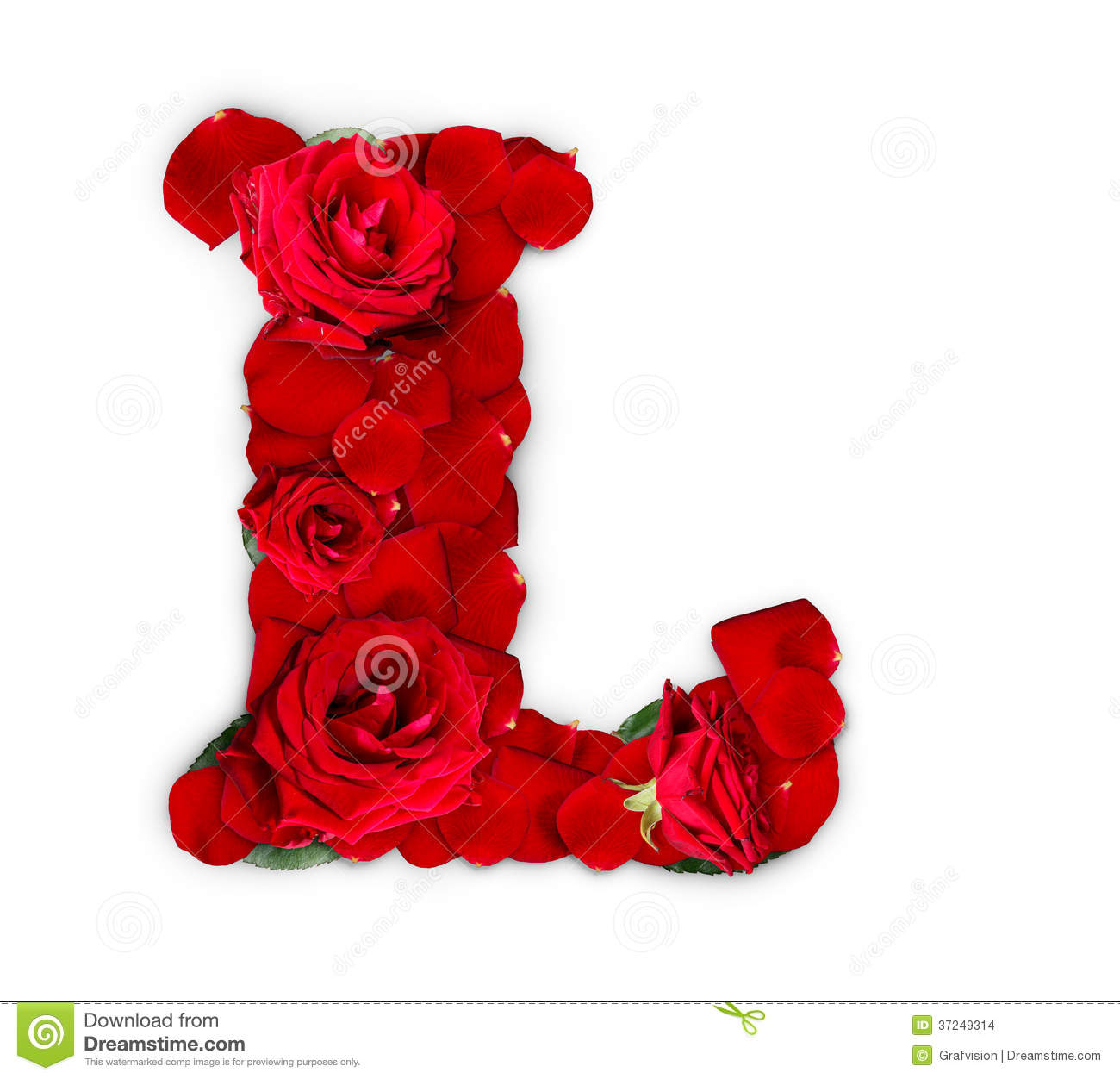 Letter L made from red roses and petals isolated on a white background ...