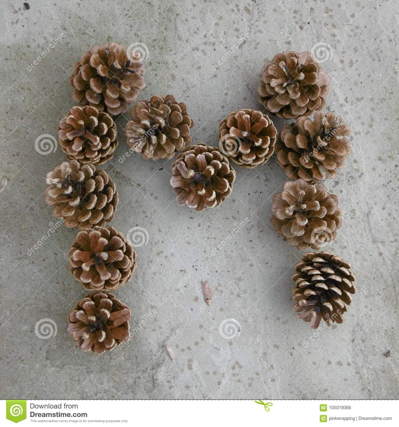 Letter M Made Out Of Pine Cones Stock Photo - Image of letter, stone:  105019366