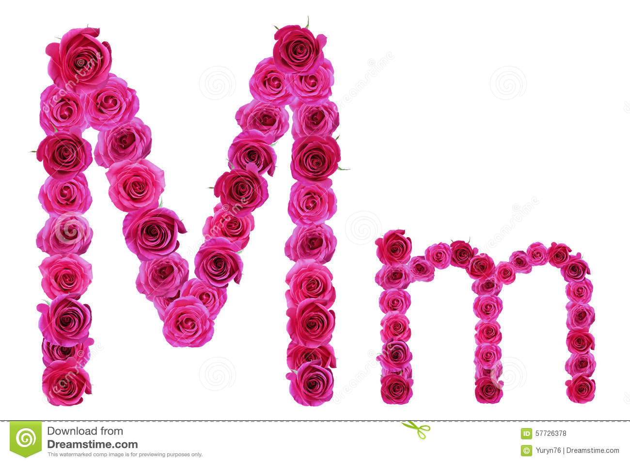 Letter M Of Roses Stock Photo Image Alphabet Leaf
